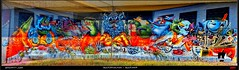 Leonardo da Weird (pharoahsax) Tags: world street urban streetart get art colors wall writing germany painting deutschland graffiti artwork mural paint artist kunst tag tags spray peinture urbanart painter writer graff sb legal spraycan saarland saarbruecken pmbvw worldgetcolors