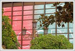 Le lampadaire et les orangers (GilDays) Tags: blue red espaa orange green bird rouge sevilla spain nikon streetlamp vert seville andalucia bleu espana andalusia espagne oiseau sville orangetree lampadaire oranger andalousie d810 nikond810 anda0915