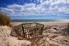 Cage (Dotzap) Tags: sky beach portugal faro sand cage ciel algarve plage océan armona
