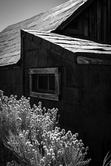 Bodie-77-26.jpg (mat3o) Tags: california ca blackandwhite monochrome ghosttown bodie goldmine goldmining abandonedtown goldrushtown