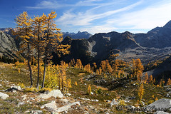 424B6773 (forrest.croce) Tags: mountains larches northcascades noca fall color larch