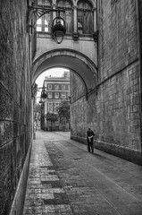 """Barcelona Alley • <a style=""""font-size:0.8em;"""" href=""""http://www.flickr.com/photos/45090765@N05/22124350851/"""" target=""""_blank"""">View on Flickr</a>"""