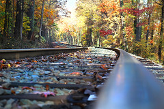 The curves of the line (On Explore 11/10/2015) (die Augen) Tags: road railroad autumn trees fall train canon bowie colorful steel tracks maryland rail transportation infrastructure sl1 bowiemaryland