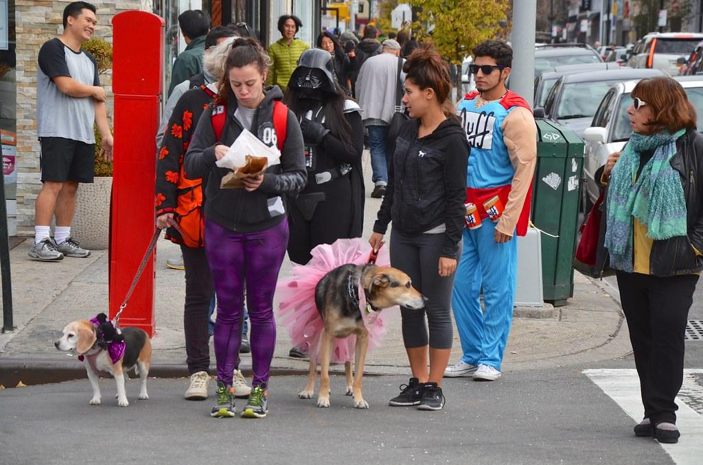 Halloween On Austin Street (Joe Shlabotnik) Tags dog halloween costume simpsons darthvader duff  sc 1 st  Fiveprime & The Worldu0027s newest photos of costume and duffman - Flickr Hive Mind