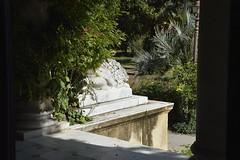 Villa  Whitaker a Malfitano: un leone di Mario Rutelli (costagar51) Tags: italy italia arte sicily palermo sicilia storia bellitalia anticando panoramafotográfico contactgroups