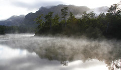 pulling the puzzles apart (Keith Midson) Tags: tasmania lake lakerosebery wilderness trees forest fog mist still calm tranquil water mountains westcoast