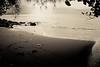 Copy of Kauai b&w34-2 (chiarina2016) Tags: kauai hawaii island beach monotone blackandwhite chiarinaloggia stormyseas waves trails hiking surf hanalei hanaleibeach sea ocean
