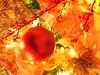 PC181006 (mina_371001) Tags: hyattregencyvancouver vancouver canada xmastree christmastree hyattregency hotel photographywork olympusomdem10 ornaments