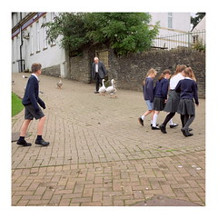 Geese man (ngbrx) Tags: caerffilicastle wales caerffili caerphilly cymru uk united kingdom vereinigtes königreich grossbritannien great britain street