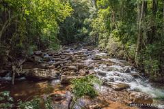 Rio São Domingos (Carrara, R.) Tags: allnaturesparadise river rio mg apa mata atlântica brasil