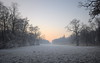 a frosty day (koaxial) Tags: p1011216p4ma koaxial winter 2017 nymphenburg park trees bäume nebel fog mist pink sky sunset meadow frosty frozen cold kalt