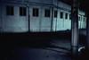 img745 (Lonly Goat) Tags: 浅草 フイルム写真 kodachrome200 contax 路地 裏路地 花やしき 六区 夜景
