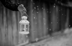 lights will guide you home (auntneecey) Tags: lantern snow hand 365the2017edition 3652017 day19365 19jan17 odc thenow blackandwhite monochrome hmbt bokeh
