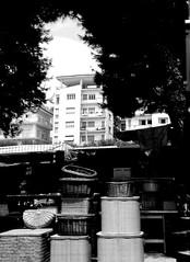 sabato di mercato (enricoerriko) Tags: enricoerriko erriko enrico portocivitanova civitanovamarche citanò civitanovese italie italy italia italien marche civitanovaturismo tifosi ultras citanòregna nyc beijing moscou milano torino barcelona paris corsodalmazia piazzaxxsettembre vialetti piazzagramsci viatrento viagorizia vianelsonmandela piazzaleitalia us bua chicago illinois bb la beach sea gravel red blue rosso blù blackwhite bn commercio mercato biciclette bicicletta bici abbigliamento scarpe shoes buskers market pistaciclabile ro ri civitanova