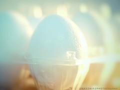 MM - E G G L I G H T I N G (NadzNidzPhotography) Tags: highkeyphotography shadows highlights nadznidzphotography macromondays egg light lights beautifullight softbokeh bokeh