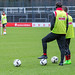 FC Köln: Training am 30.01.2017