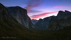 Hot Diggity! (Stephanie Sinclair) Tags: nationalpark usdepartmentoftheinterior california elcapitan findyourpark halfdome mountains seattleempress stephaniesinclairphotography sunrise trees tunnelview waterfall yosemite sigma canon