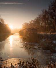 Winter scene (Alex Verweij) Tags: winter scene alexverweij canon 5d markiii almere almerehaven slot water 2017 zon zonlicht ice ijs riet serene