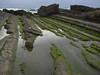 Xiaoyeliu park (Sergiy Matusevych) Tags: taitung tofu doufu rock ocean park taiwan travels xiaoyeliu olympusmzuikodigitaled1240mmf28pro