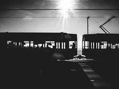 the last passengers (matthias hämmerly) Tags: zürich zuerich tram light bright winter switzerland street streetphotography grain dark contrast black white bw public transport lake see bürkliplatz buerkliplatz silhouette ricoh grd 2
