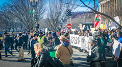 2017.02.04 No Muslim Ban 2, Washington, DC USA 00486
