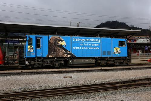 Zillertalbahn D16 Greifvogelvorführung, Jenbach
