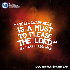 Quote of the Day: Self-Awareness Is... (Mehdi/Messiah Foundation International) Tags: deepthoughts enlightened enlightenment god godly lifelessons lord meditate meditation please quote quoteoftheday quotes selfawareness thoughtoftheday younusalgohar
