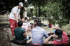 p-MKD0030 (IFRC) Tags: children child relief macedonia aid trainstation disaster migration migrants gevgelija ifrc redcrossredcrescent macedoniafyrom municipalityofgevgelija macedonianredcross