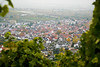 city (.christoph.G.) Tags: city nature vineyard natur stadt beutelsbach zweinstadt