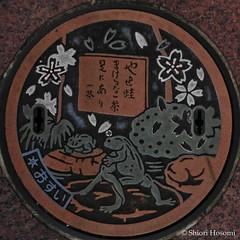 (Shiori Hosomi) Tags: japan tokyo october   2015   23