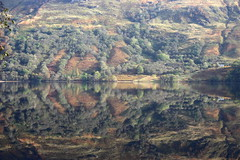 Loch Lomond Scotland Dead Calm (Dave Russell (1.5 million views thanks)) Tags: landscape waterscape water reflection reflect loch lomond scotland dead calm trees outdoor mountainside mountain