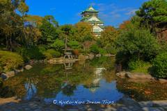 Toyotomi Hideyoshis Castle in saka. (KyotoDreamTrips) Tags: japan    saka sakaj toyotomihideyoshi japanesecastles