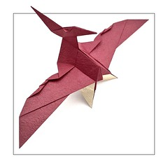 Pteranodon longiceps (the real juston) Tags: america paper design flying origami pattern box reptile interior north diagram western late bp cp crease paperfolding papiroflexia folding seaway pterodactyl cretaceous juston pterosaur pleating pteranodon  pterodactylus boxpleating propatagium uropatagium 225 pycnofibers pteroid brachiopatagium cruropatagium