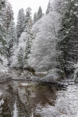 Yosemite 227 (Images by John 'K') Tags: winter snow nikon yosemite yosemitenationalpark yosemitevalley johnk d610 yosemitepark johnkrzesinski randomok nikond610