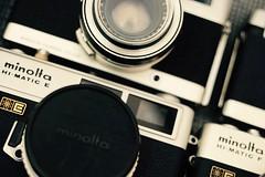 DSC07812 (laura_rivera) Tags: camera old macro vintage minolta sony 55mm minoltahimatic 55mmf28 fotodiox 55mmmacro laurarivera fotodioxadapter vivitar55mm fotodioxpro sonya7