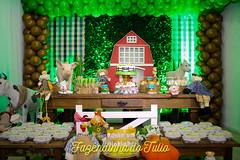 FAZENDINHA DO TULIO 2015 FINAL-5 (agencia2erres) Tags: aniversario 1 infantil festa ano fazenda fazendinha