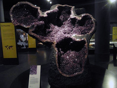 Amethyst Crystal, National Museum of Scotland 2015 (Dave_Johnson) Tags: rock stone museum scotland edinburgh crystal nationalmuseumofscotland mineral amethyst nationalmuseum museumofscotland semiprecious