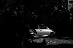 _R015085 (yukio sakaue) Tags: ricohgr gr reflection bw blackandwhite border horizon shadow silhouette