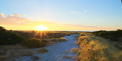 To the beach (Adam Dayman) Tags: beach largsbay southaustralia sunset track path sand sanddunes