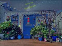 Joyeux Noël et Bonne Année 2017 (@bodil) Tags: scotland ecosse aberdeen joyeuxnoëletbonneannée merrychristmasandahappynewyear
