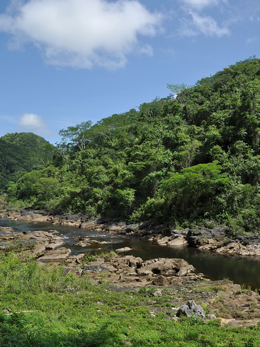 San Ignacio - Rainforest River
