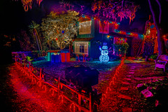 DSC04333--Pacific Grove, CA (Lance & Cromwell back from a Road Trip) Tags: pacificgrovexmas pacificgrove christmas christmaslights montereypeninsula montereycounty 2016 sony sonyalpha a7ii fe24240mm 24240mmlens 24240mm