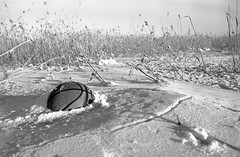 Frozen and forgotten (Cattail_) Tags: helsinki vanhankaupunginlahti ice snow winter finland basketball