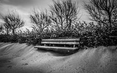 Winter in solitude (voxpepoli) Tags: