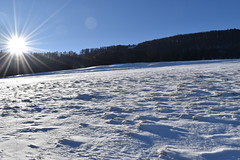 PHO_0131 (Dimi_M) Tags: neige soleil nature foret