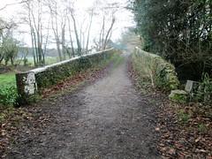Stover to Teigngrace Track Old Bridge (Bridgemarker Tim) Tags: devonbridges 1877 stoverpark templerway stoverschool