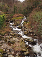 East Lyn River at Watersmeet, N.Devon (nrich1050) Tags: olympus em5 omd mzuiko zuiko m17mm f18 east lyn river watersmeet devon woodland falls