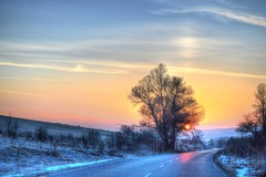 Early in the morning. (mmalinov116) Tags: ngc early morning bulgaria българия sunrise tree sun nature beautiful beauty road snow winter