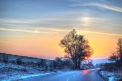 Early in the morning. (M Malinov) Tags: ngc early morning bulgaria българия sunrise tree sun nature beautiful beauty road snow winter