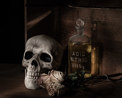 Always Read the Label! (Explored) (lclower19) Tags: skull decay acid bottle lightpainted odc caution explored vanitas stilllife